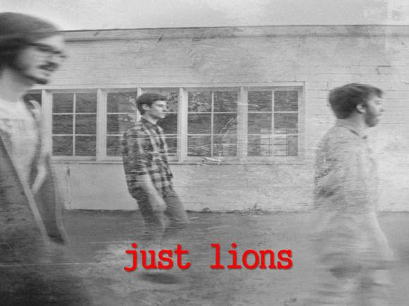 just lions